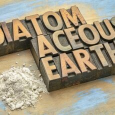 How to use Diatomaceous Earth for Chickens